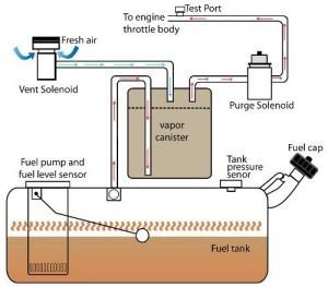 Shaken: EVAP system